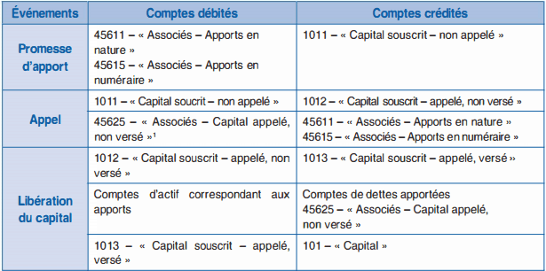 le capital analyse comptable