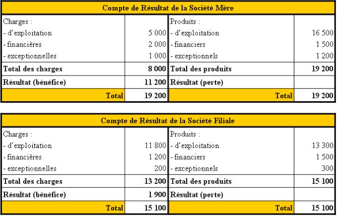 Comptes de résultat de la Société Mère et de la Société Filiale